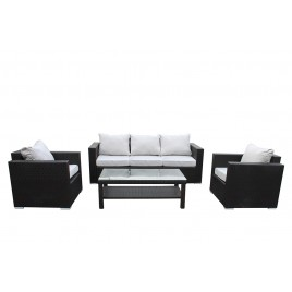 4 Piece Sofa Set with Cushions  S5099-S+2C+CT
