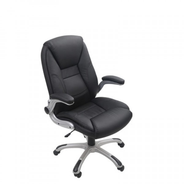 Office Furniture Executive Chair  OF-12002